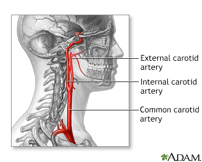 Artery In Neck Twitching
