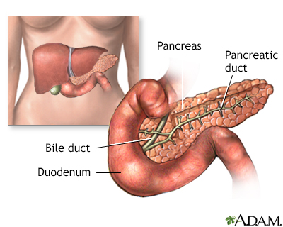 Pancreas