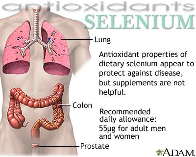 Selenio - antioxidante