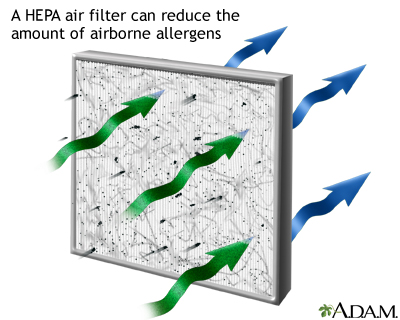 HEPA air filter