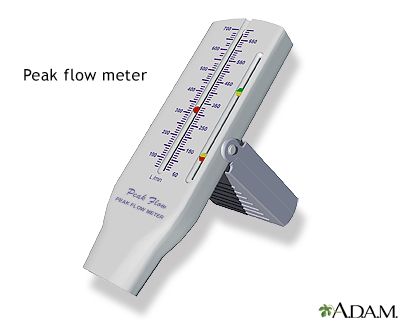 Peak flow meter