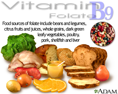Vitamin B9 source