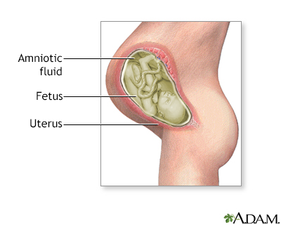 Amniotic fluid