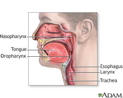 Oropharynx
