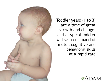Toddler development
