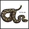 Poisonous snakes - series