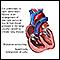 Core pulmonale